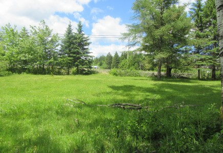 8.90 acres Route 425 Boom Road
