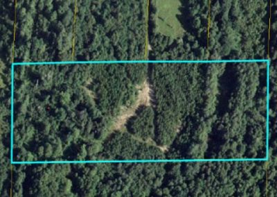 5 acres Route 420 Cassilis