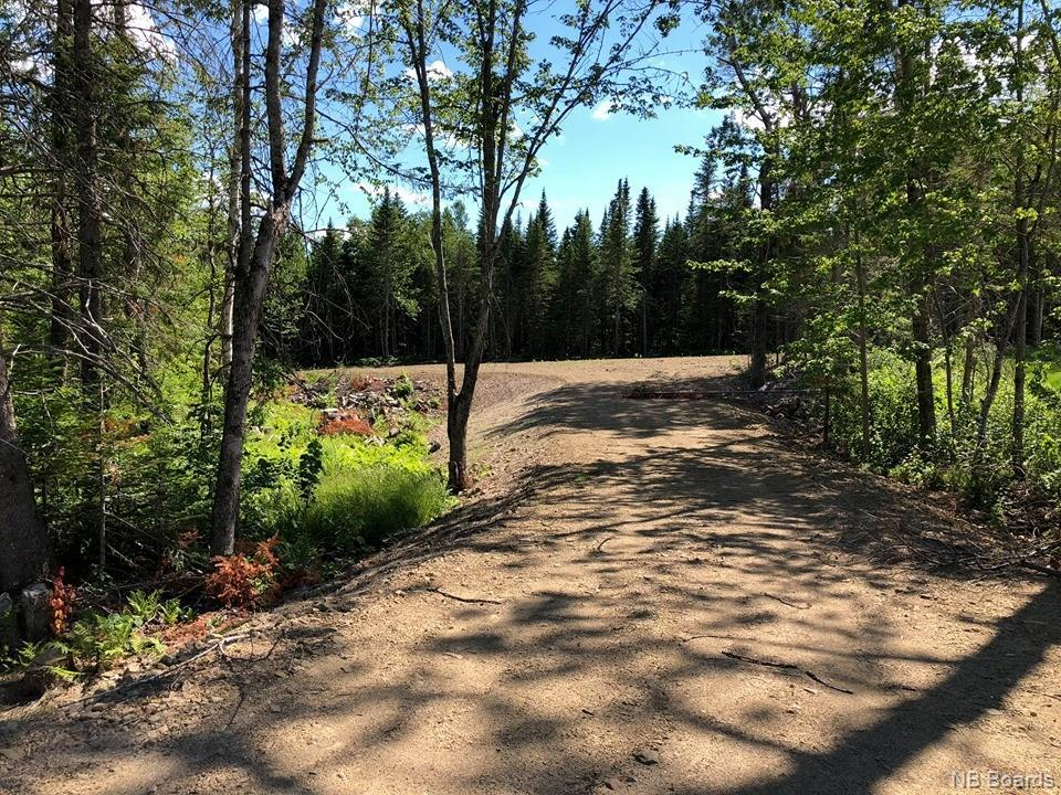 5.68 Acres Rennie Road, Miramichi, New Brunswick  E1V 3K3 - Photo 1 - NB040467