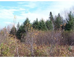 Lot 05-1 Route 430, trout brook, New Brunswick